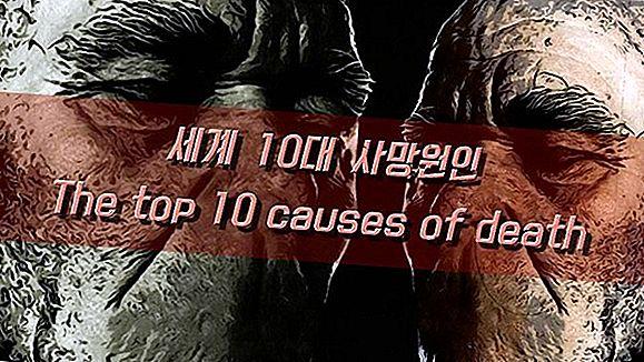 세계 10 대 불가사의