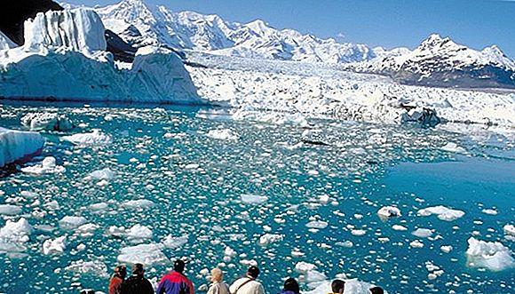 알래스카 데날리 국립 공원 관광 명소 BEST 10