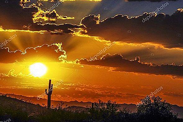 10 최고 등급의 캘리포니아 사막 관광 명소