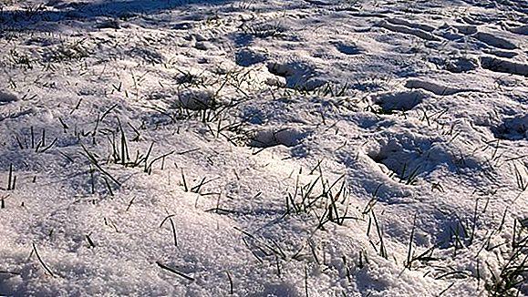 Cele mai bune locuri de mers în zăpadă în această iarnă