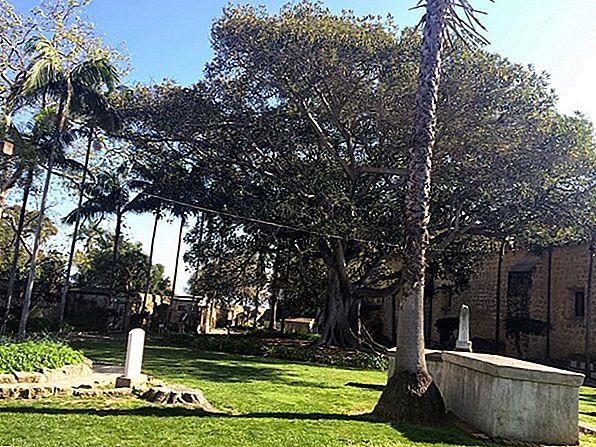 캘리포니아 산타 크루즈 추천 호텔 10 곳
