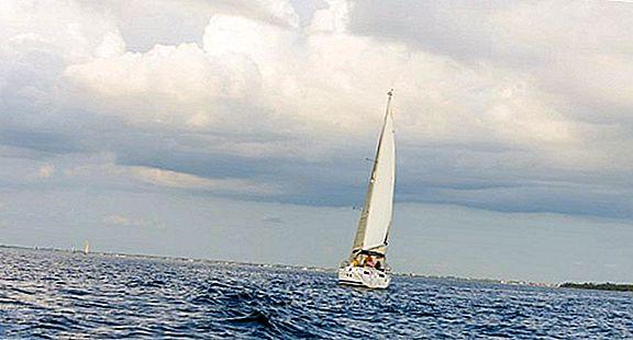 플로리다 남서부 10 만 섬의 마르코 섬 방문