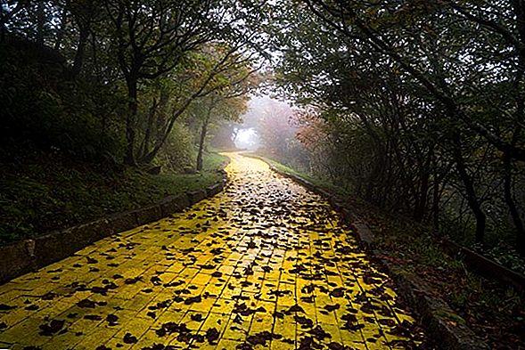 Следуйте по дороге из желтого кирпича в страну Оз в Северной Каролине