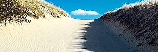 7 Die besten Sehenswürdigkeiten in Virginia Beach, Virginia