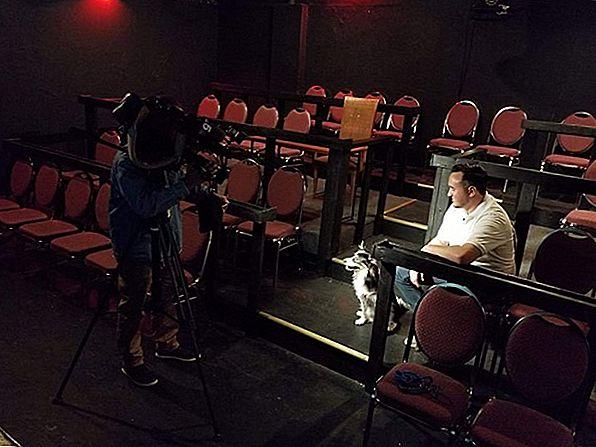 K9 Cinemas는 무제한 와인을 제공하는 텍사스의 개 친화적 인 영화관입니다.