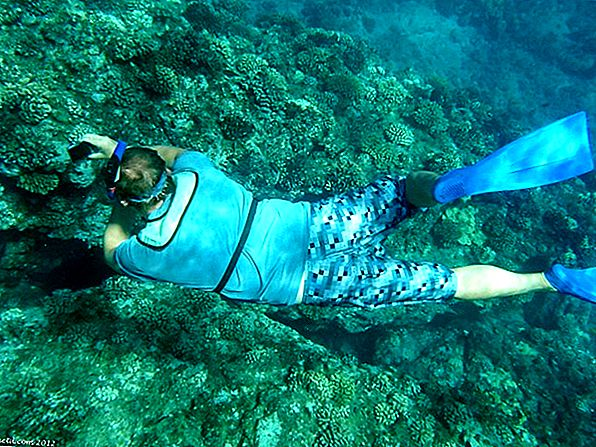 Snorkeling Lanai - A Scenic Sail and Outdoor Adventure
