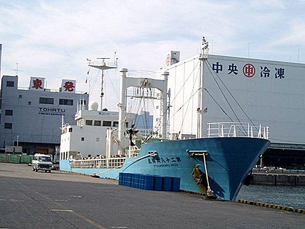 貨物船での旅行