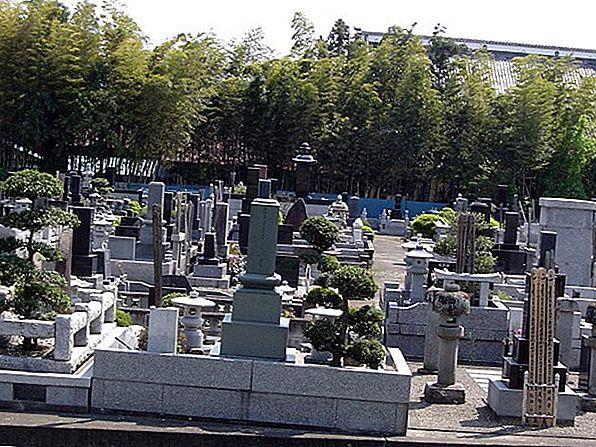 밤에 일본 오쿠노 인 묘지의 작은 영혼을 만나다