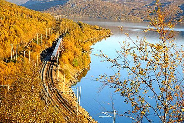 렌터카 또는 기차를 타시겠습니까?
