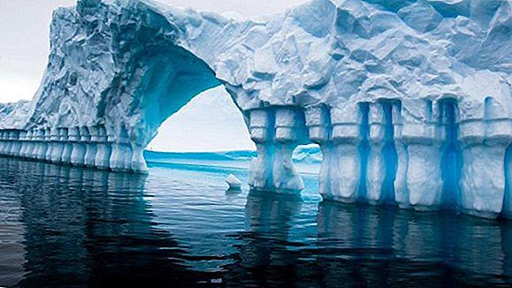 Pleneau Bay, 남극 대륙의 조디악 투어