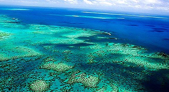 13 Fotografii suflante din Queensland, Australia