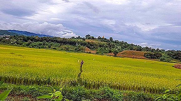 Experiența Mandalay: Gemul ascuns al Myanmarului