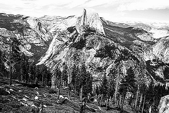 Ansel Adams Tribute - Yosemite Valley