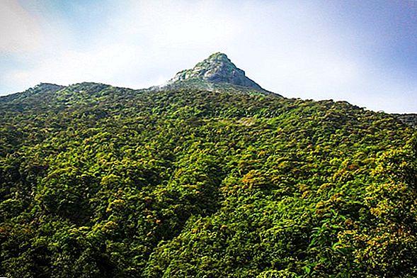 Adam's Peak Pilgrimage - ภาพถ่ายจากศรีลังกา