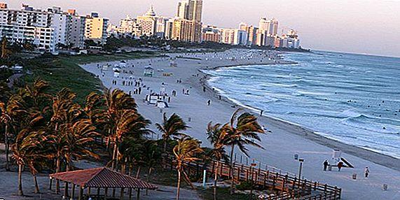 Die aufregendsten Nachtclubs in Miami