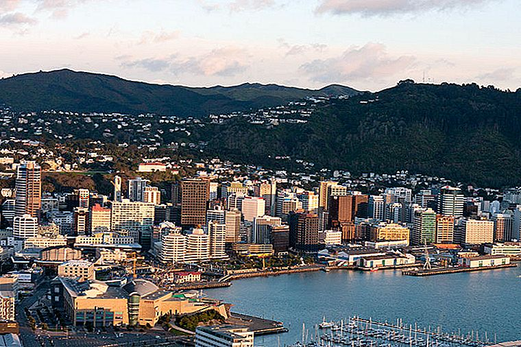 5 Must-Visits in Wellington