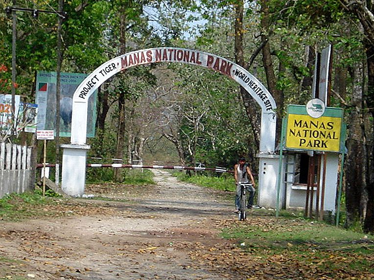 Manas National Park- Beauty in Danger