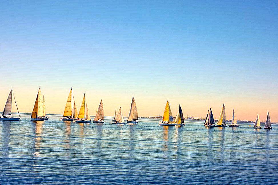 วิธีการใช้ชีวิตแบบท้องถิ่นใน Geelong Australia - Lonely Planet