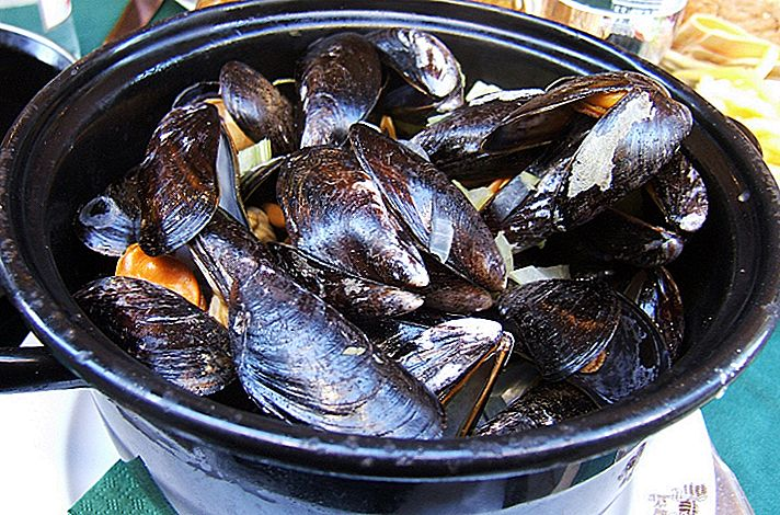 Top 10 สถานที่กินและดื่มในกรุงบรัสเซลส์