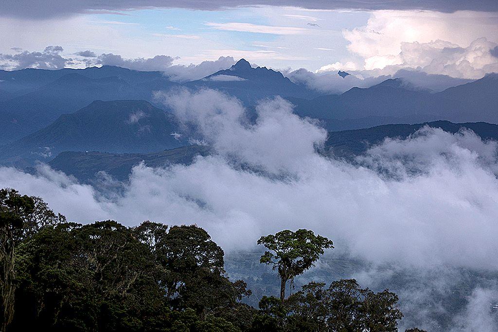 Cele mai bune experiențe din Papua-Noua Guinee