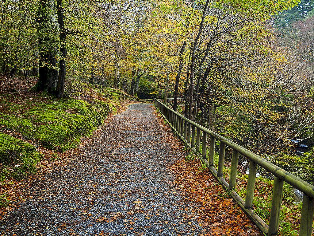 Høstlige eventyr: Ting å gjøre i Irland i høst