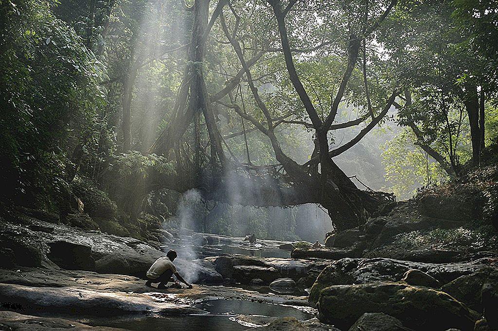 Tribes, Treks และสะพานต้นไม้ใน Meghalaya, สนามผจญภัยใหม่ของอินเดีย