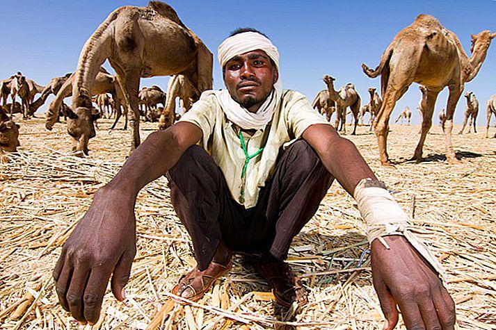 datând în khartoum sudan