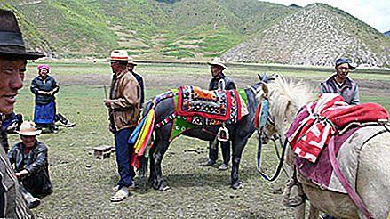 Khampa yakboys în Shangri-la