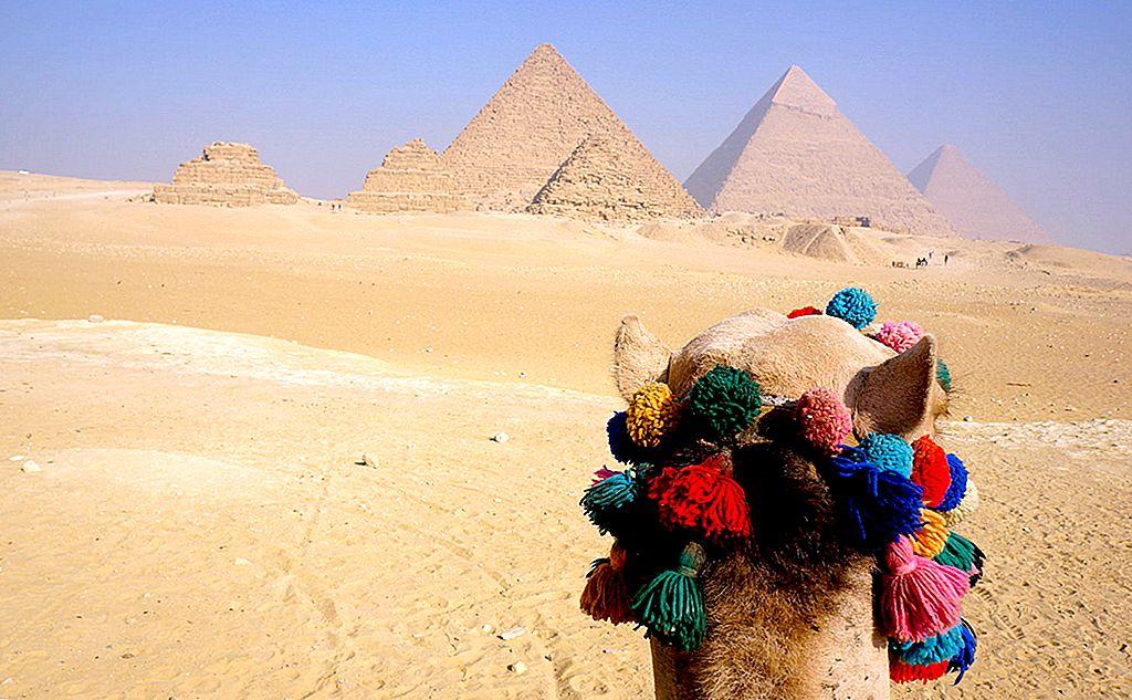カイロで最高のInstagramのホットスポットを見つける場所 - Lonely Planet