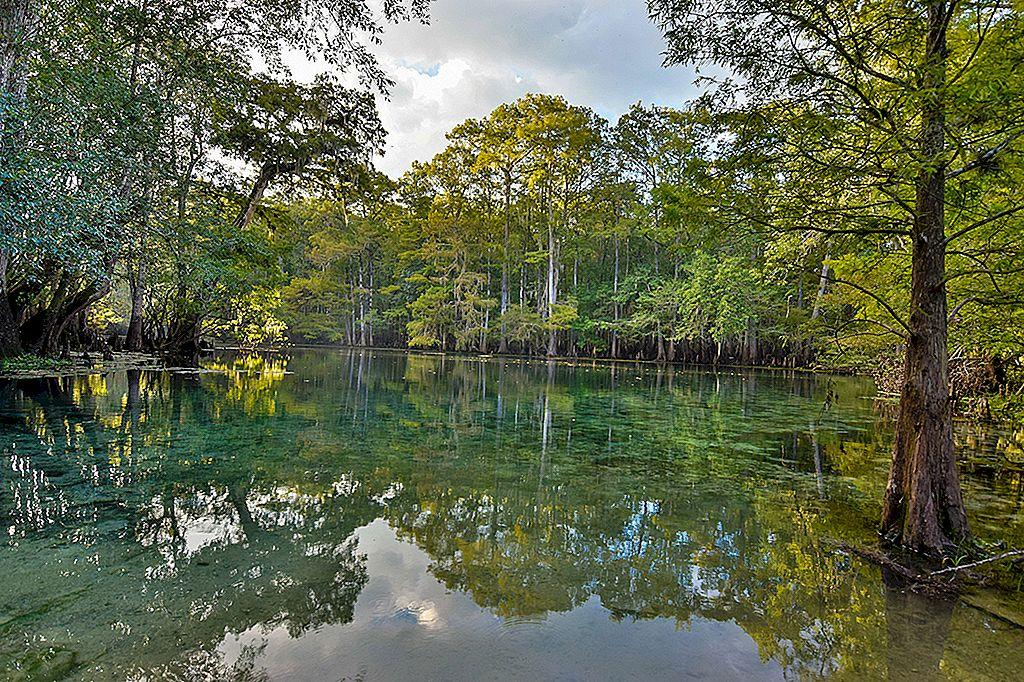 Activitățile de apă dulce din Florida