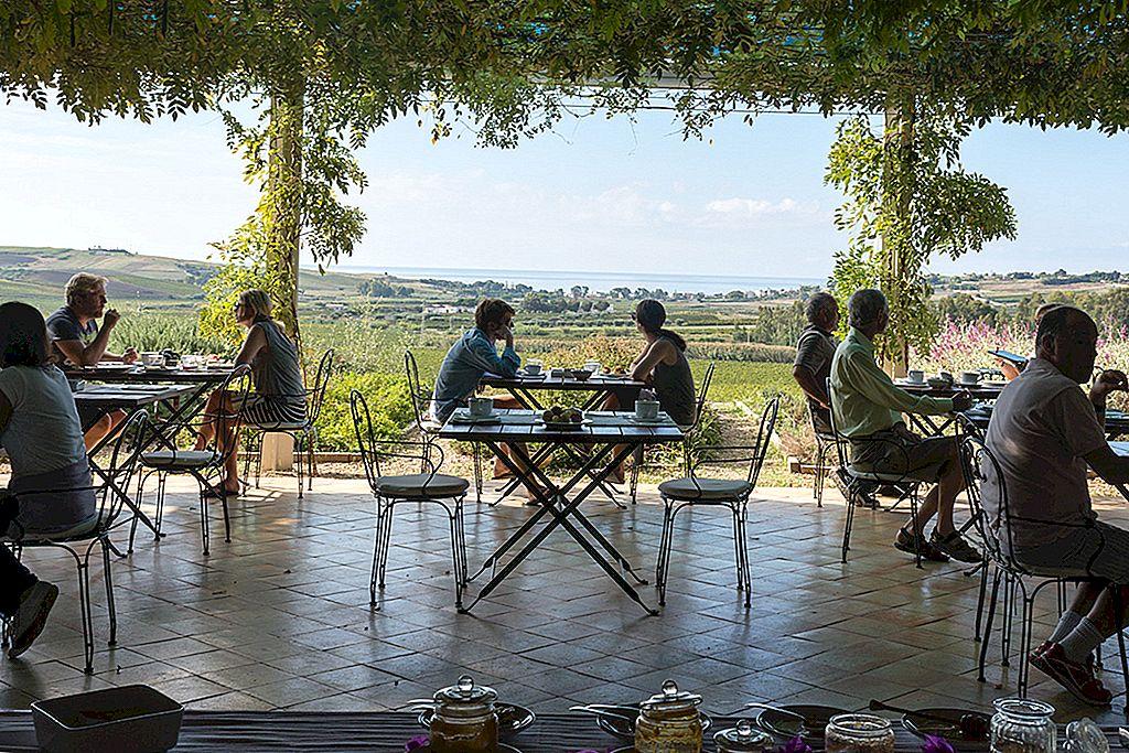 ブドウについて:シチリアのワイナリー5つは必見です