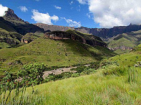 Top 10 parcuri și rezerve din Africa de Sud