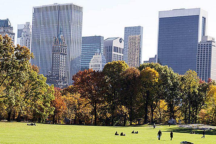 O zi perfectă: 24 de ore în New York City - călătorie NYC - Lonely Planet