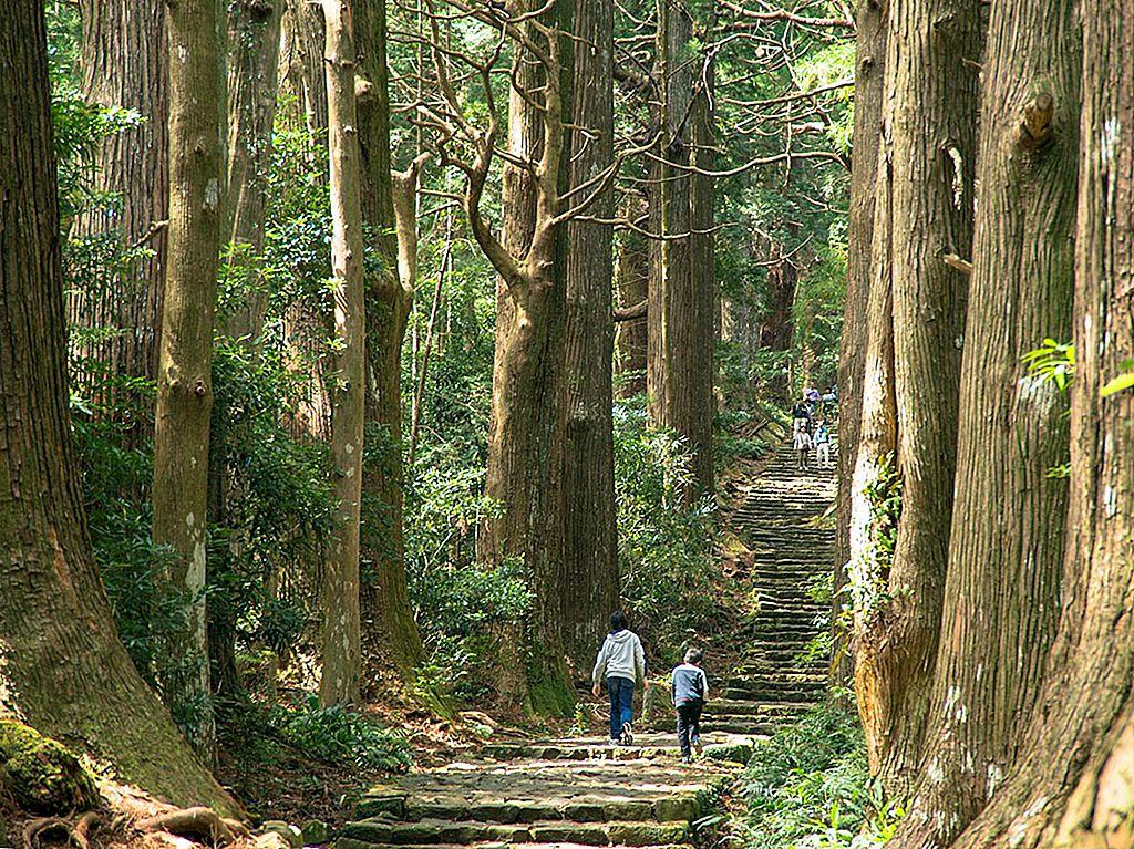 熊野古道ハイキング:日本の古代巡礼路