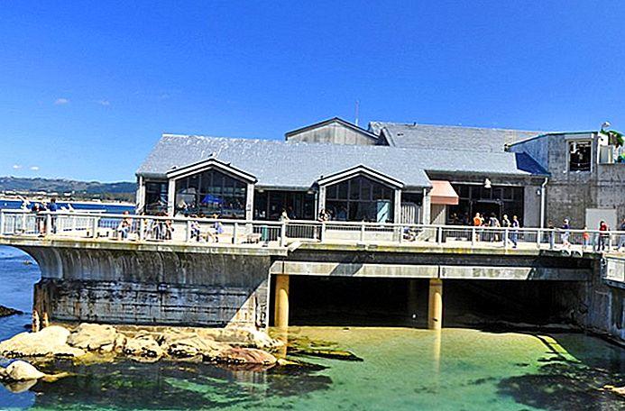 9 самых популярных туристических достопримечательностей в Монтерее