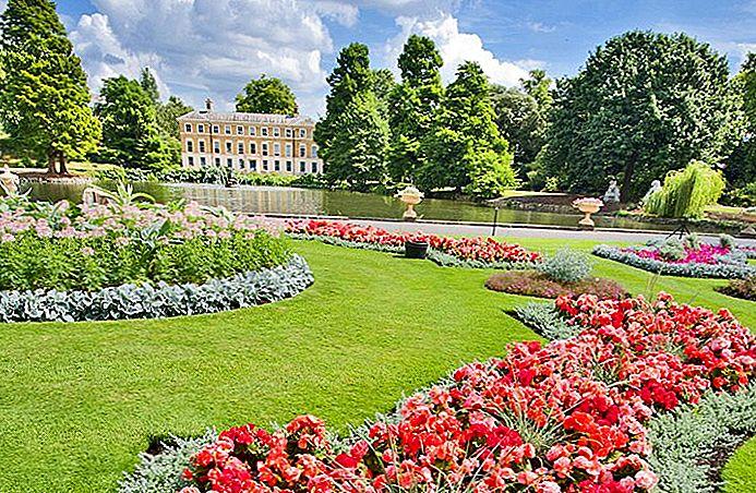Erkunden Sie die Top-Attraktionen der Londoner Kew Gardens