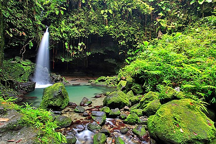 10 Top-Rated Touristenattraktionen in Dominica