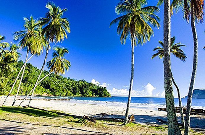 10 attrazioni turistiche top-rated a Trinidad e Tobago
