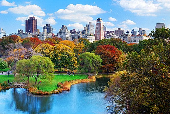 Vizitarea parcului central din New York: 10 atracții de top