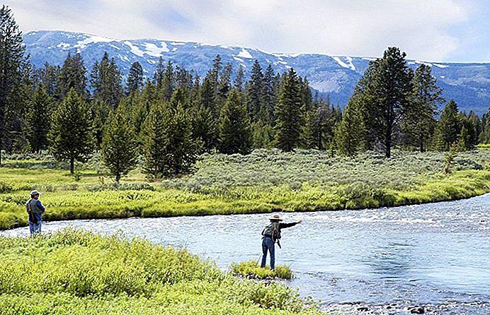 10 destinații de pescuit cu zboruri de top în Wyoming