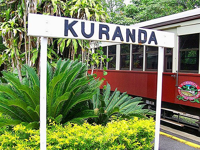 8 Top-Rated Touristenattraktionen in Kuranda