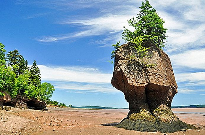 8 Top-Rated Touristenattraktionen an der Bay of Fundy