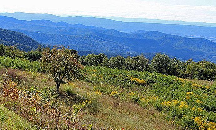 9 cele mai bune trasee montane din Parcul Național Shenandoah