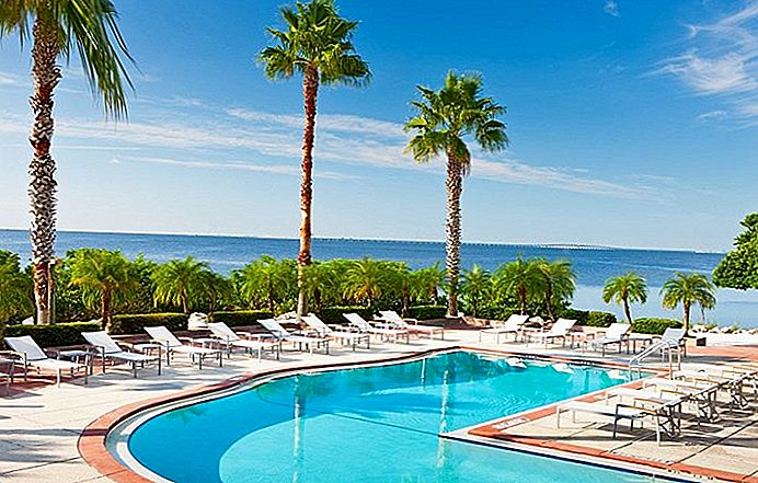 11 Top-Rated Resorts in Tampa