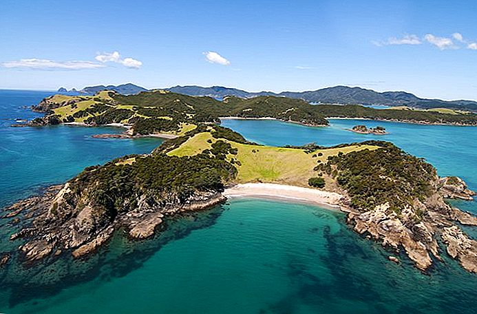 11 attrazioni turistiche top-rated nella Bay of Islands