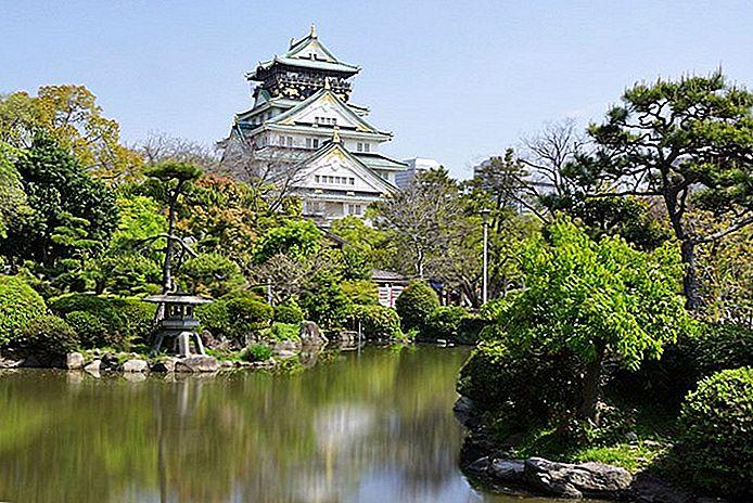 8 Top-Rated Tagesausflüge von Kyoto