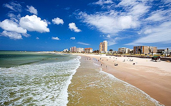 10 attrazioni turistiche top-rated a Port Elizabeth