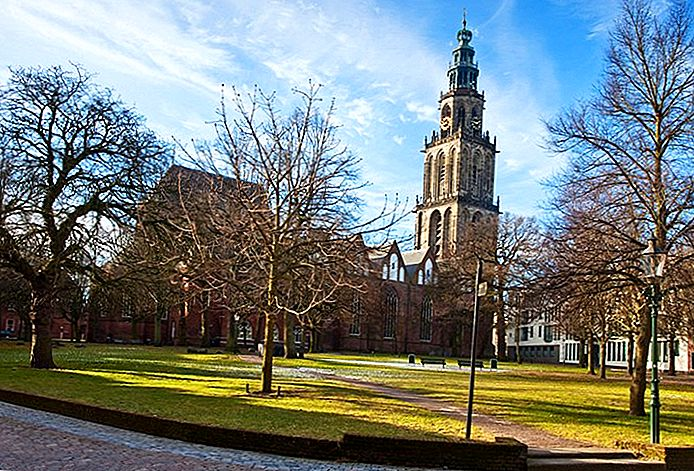 10 лучших туристических достопримечательностей в Гронингене и легких дневных экскурсиях