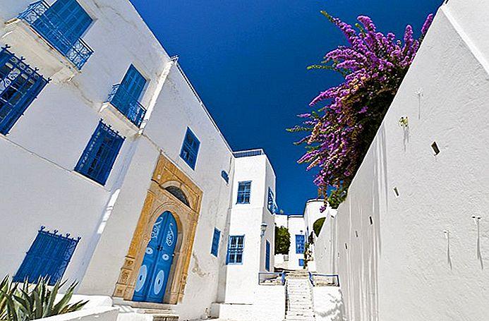 Изучение Сиди Бу Саида: живописный приморский пригород Туниса